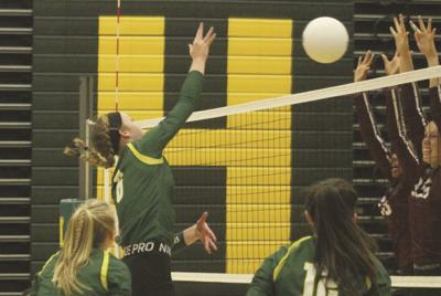 Lions roar to district wins