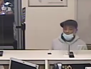 fraud suspect 2.png