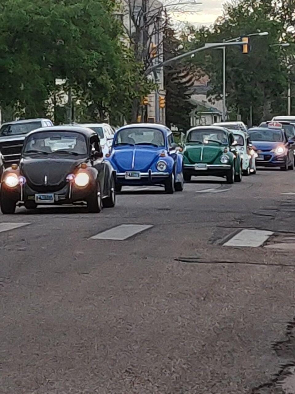 """""""horde"""" of Volkswagen Beetles"""