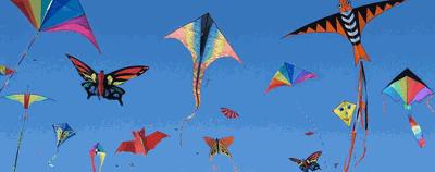 Kite festival photo