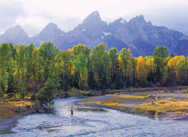 Fly Fishing on Snake River Grand Teton National Park Wyoming
