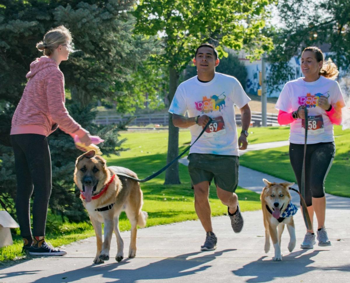 Cheyenne Dog Color Run 1