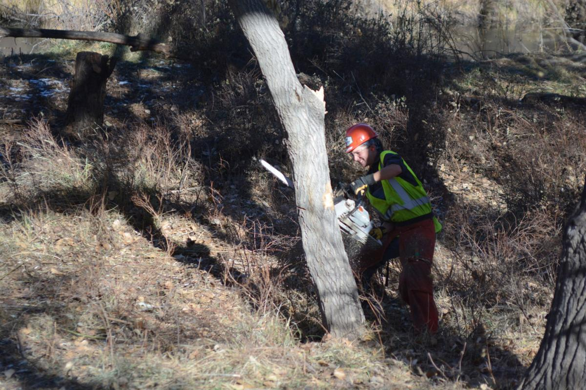 Mile High Youth Corps 2