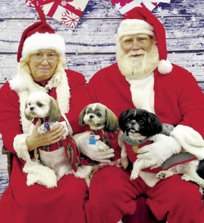 TCAR hosts annual Christmas photo shoot