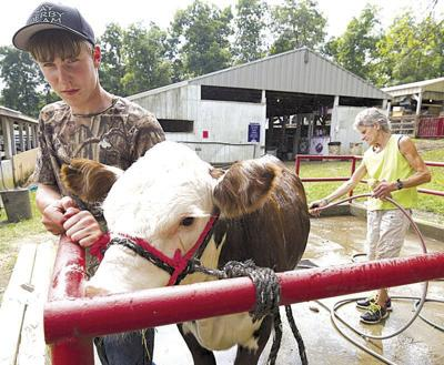 There will be a 2020 Clarion County Fair