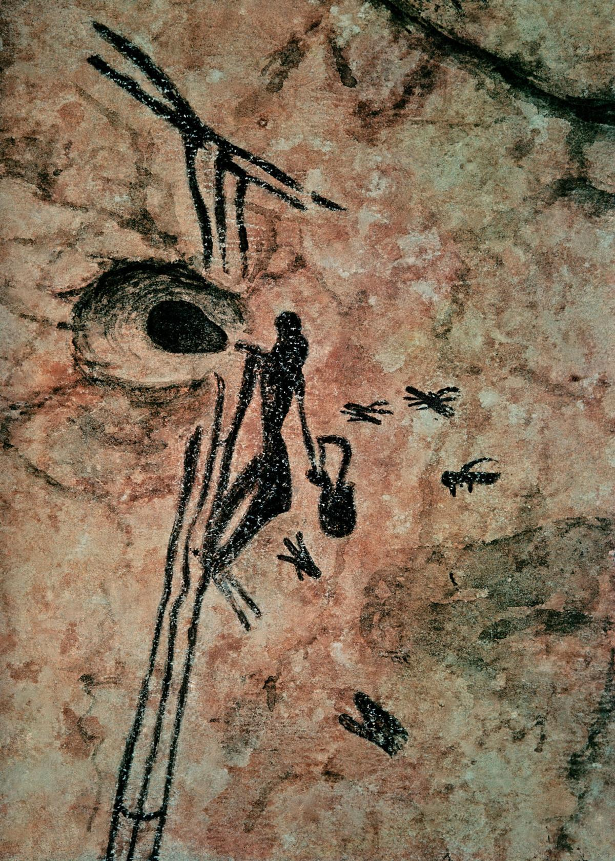 Cave Painting of Honey Harvest in Spain