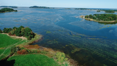 Looking Toward Hog Island from Allyn Cox Reservation in Essex