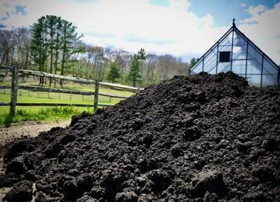 Compost Pile in Essex 2020