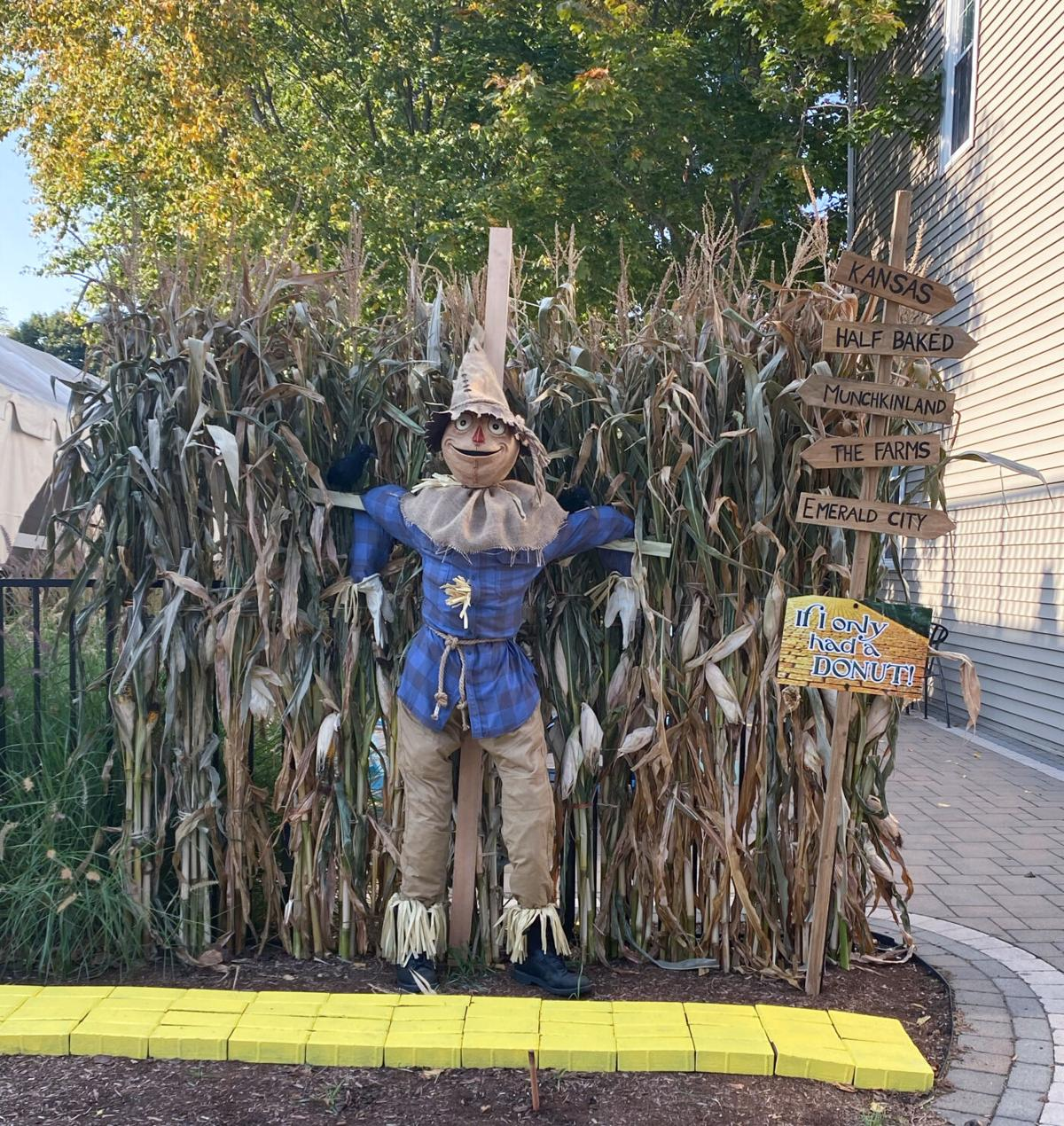 Half Baked Scarecrow