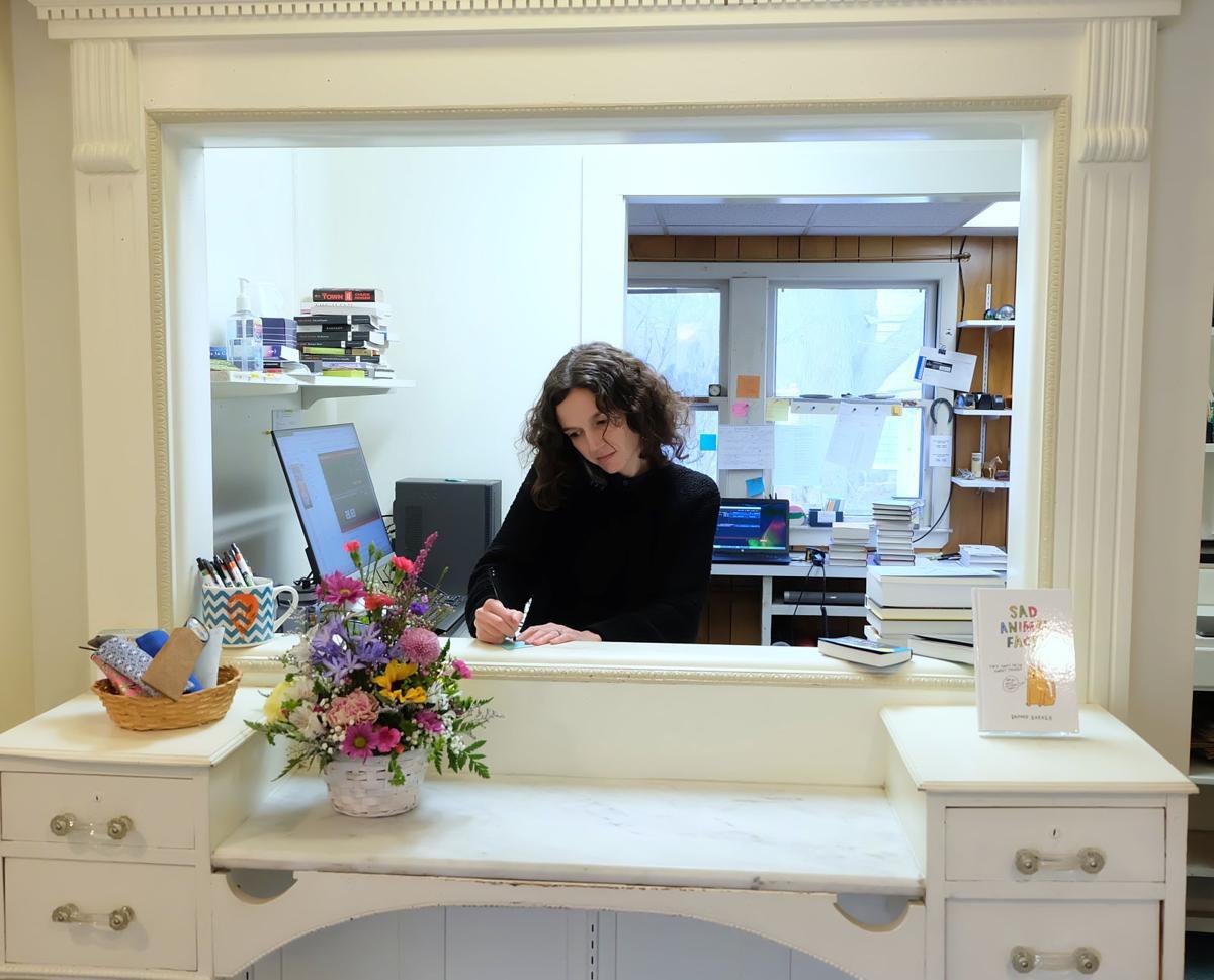 Hannah Harlow The Book Shop 2020