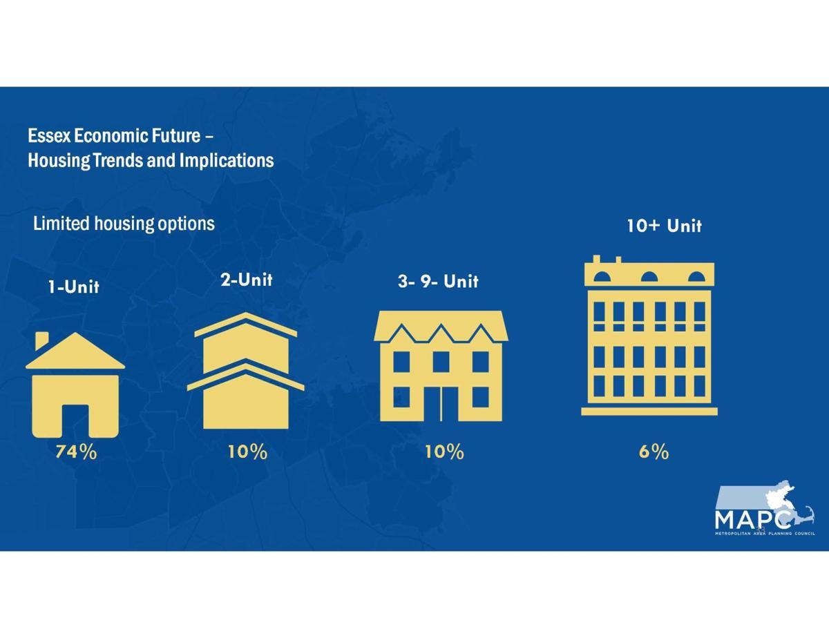 Essex Housing 2020