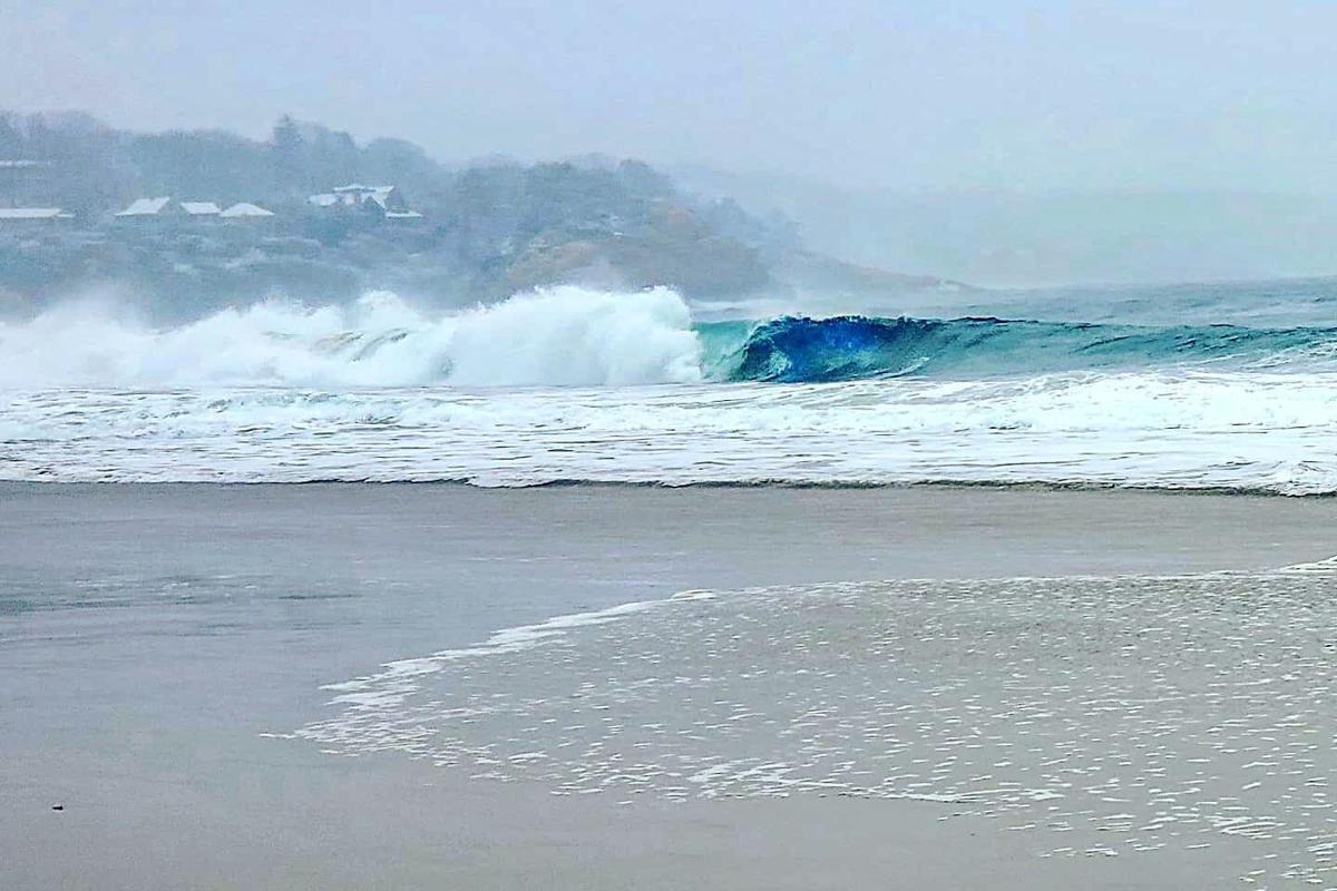 Singing Beach Surfer