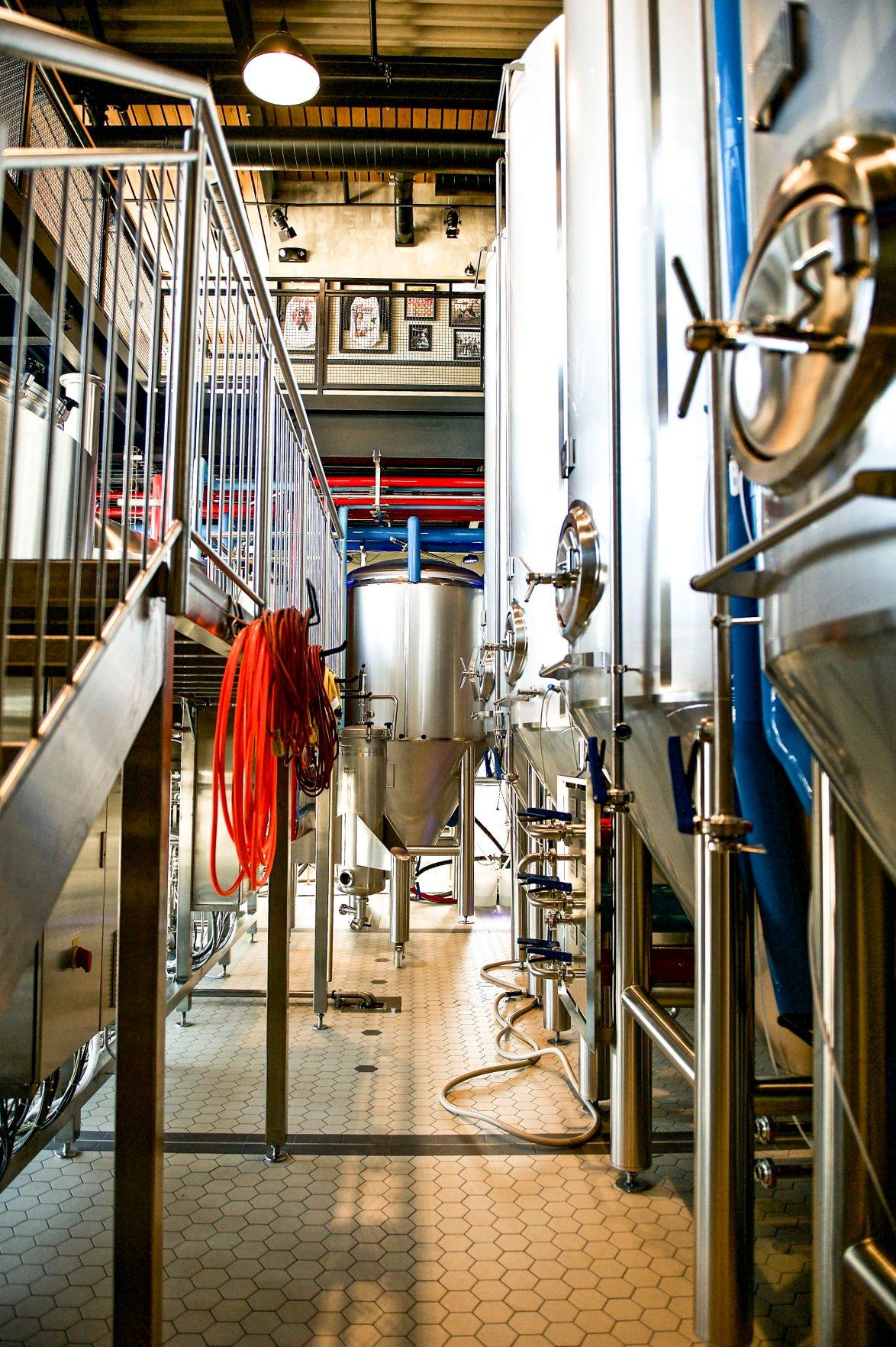 John Collins: Essex Great Marsh Brewer