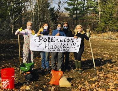 North Shore Garden Club Pollinators 2021