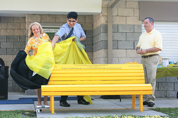 Unveiling suicide awareness bench