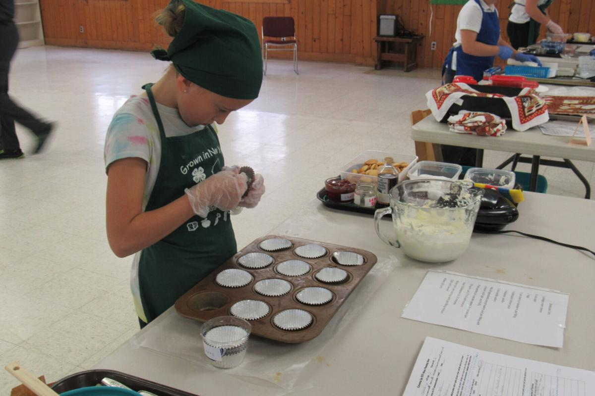 Orleans County celebrates National 4-H week