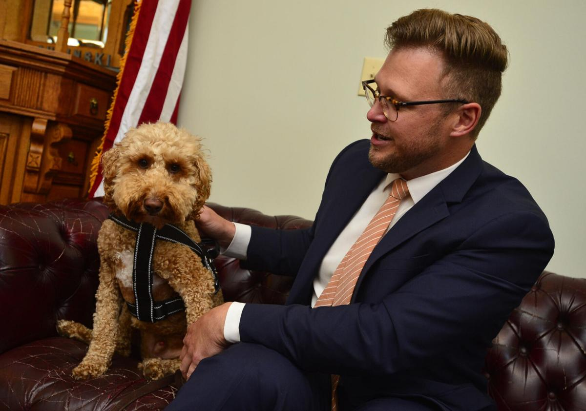 Therapy dog to help grieving families