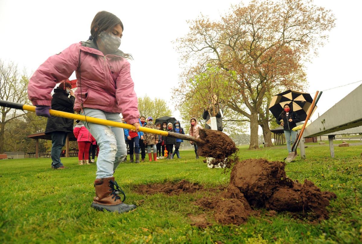 Letter inspires park cleanup
