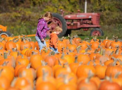 Fall activities get 'green light'