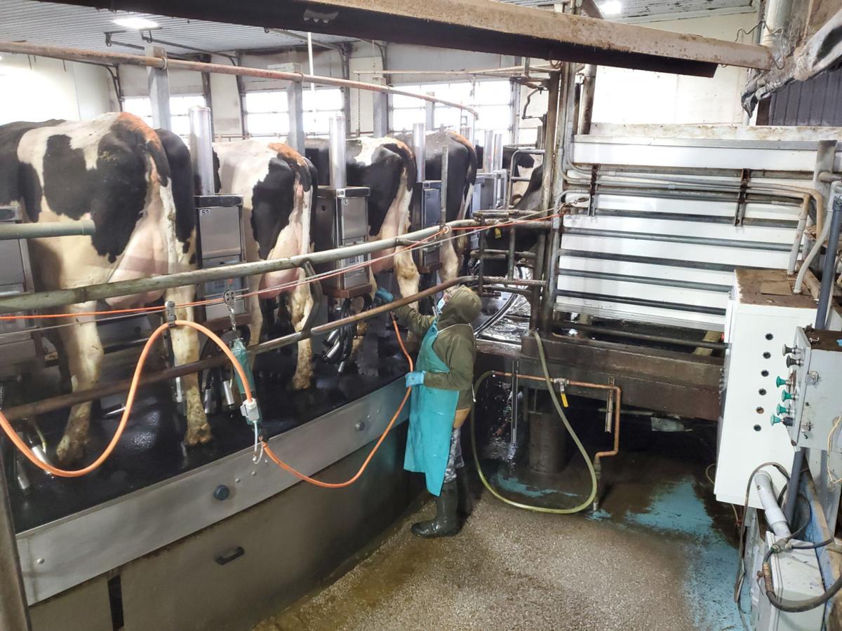 'Dairy Month' celebrates generations of dedication