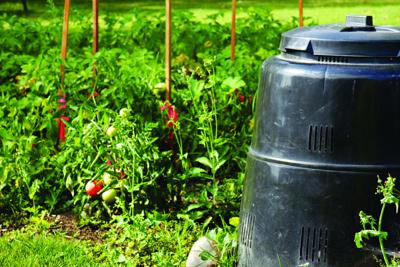 Composting is the remedy for improving soil