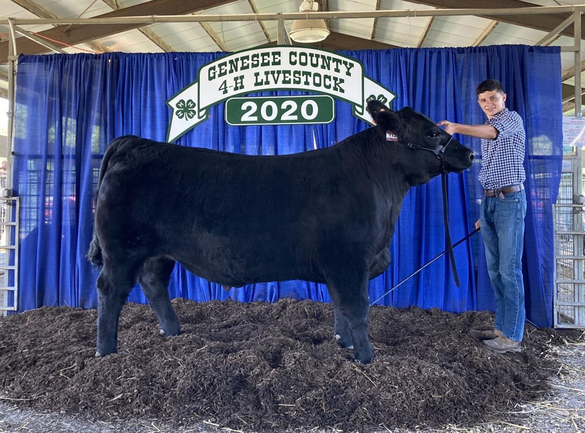 4-H'ers raise champion animals