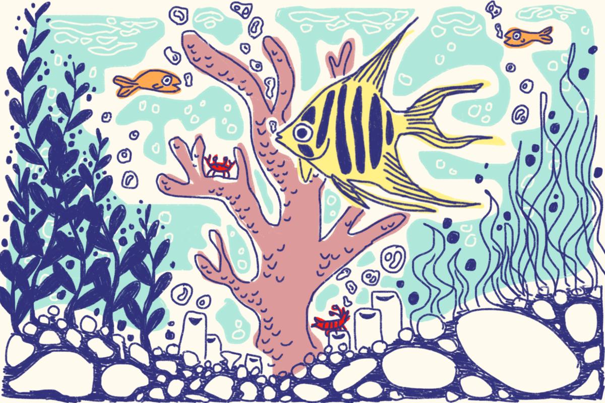 Aquarium fish graphic