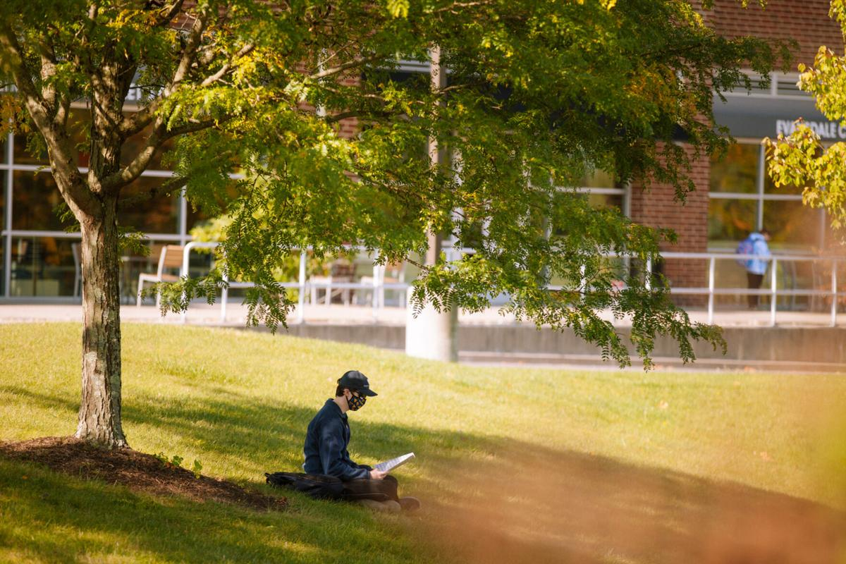 Student under tree