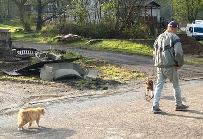 3 is company on daily walks
