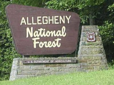 Allegheny Forest closes campgrounds