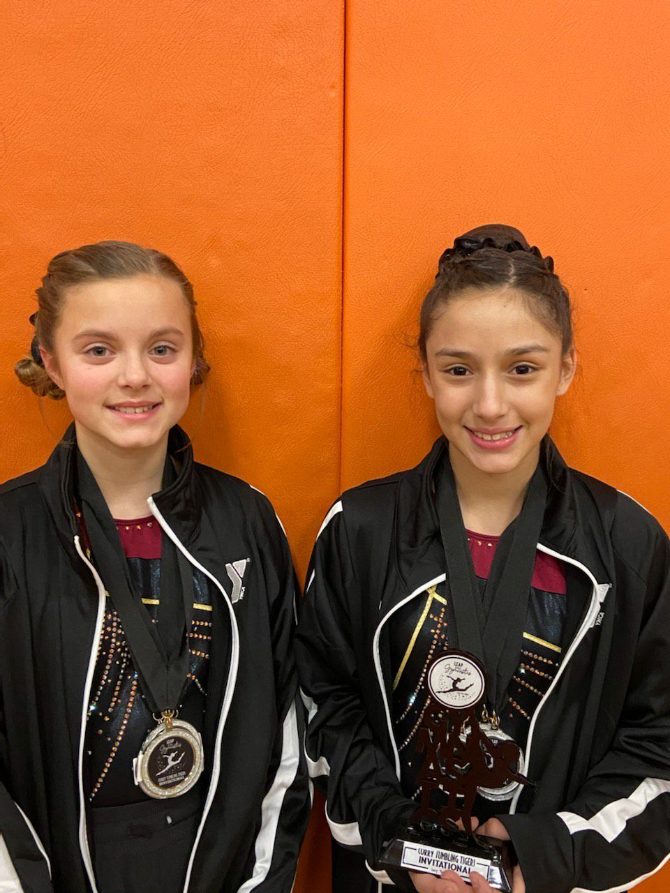 Gymnasts earn top finishes