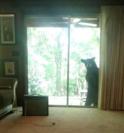 It bears watching