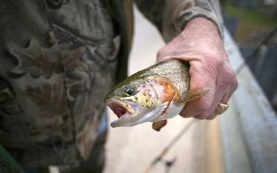 Statewide trout season opens on Saturday
