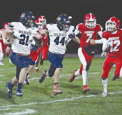 Wildcats, Falcon Knights roll