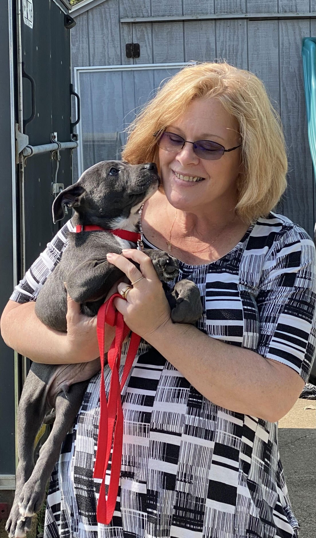 Precious Paws welcomes 22 dogs