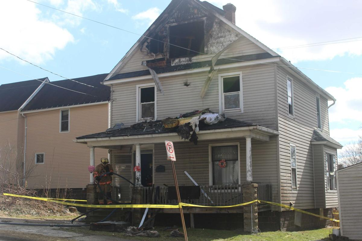 1 person hurt, dogs die in fire