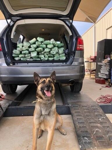 Border Patrol Agents Seize Deadly Meth at Checkpoint