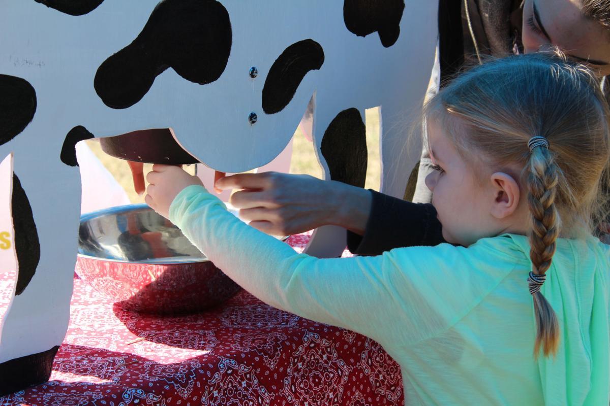 Farm to preschool 3