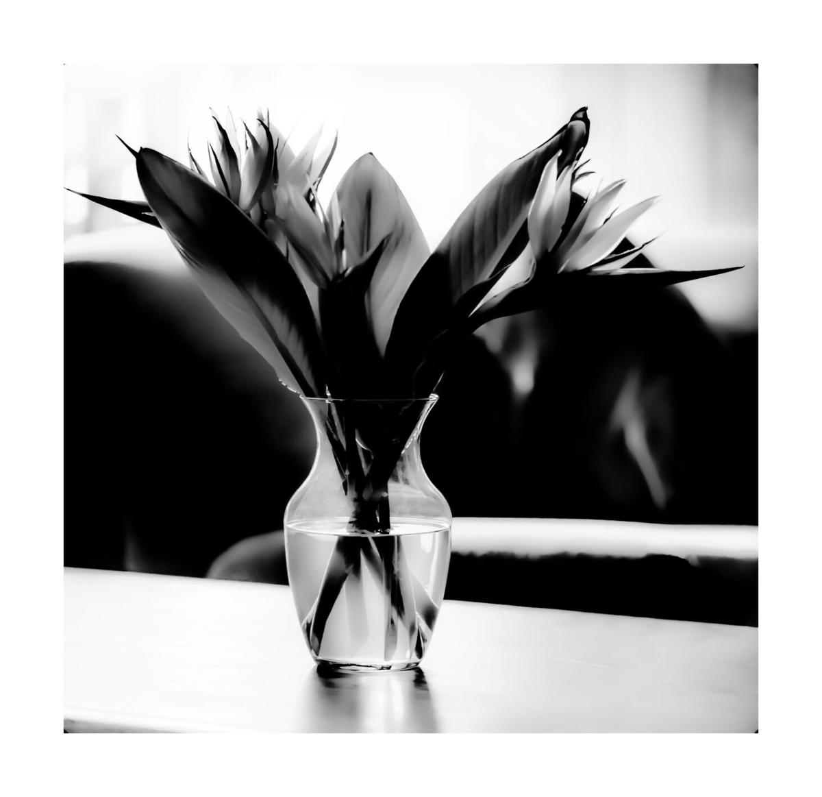 Black and White Art Exhibit 2021_4-Bill Polkinhorn