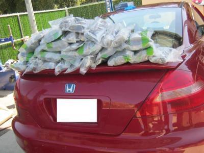 Border Patrol drugs on car