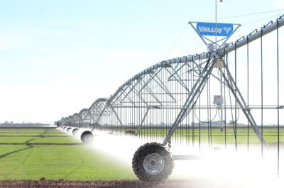 Belmont Industries overhead linear irrigation system