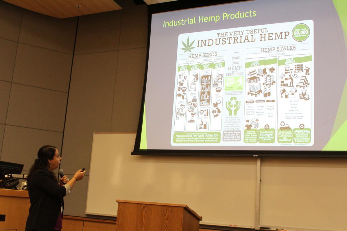 IVC considers future in growing industrial hemp