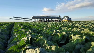 Local leaders selected for California Agricultural Leadership Program's 50th class