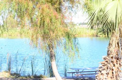 Sunbeam Lake 2019 amenities
