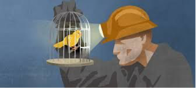 The Canary speaks