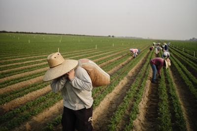 CLIMATE FARMWORKERS 7