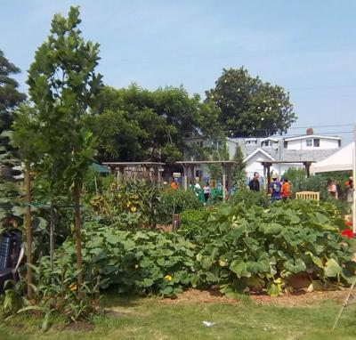 A community garden grows in East L.A.