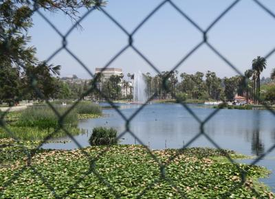 Chain link fence at Echo Park Lake