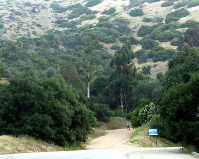 Griffith Park Trail