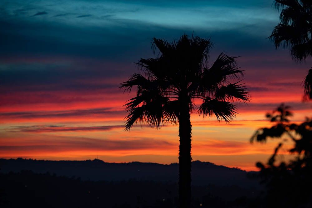 A sunset view from Montecito Heights